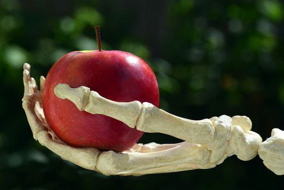 Prop skeleton hand holds red apple.
